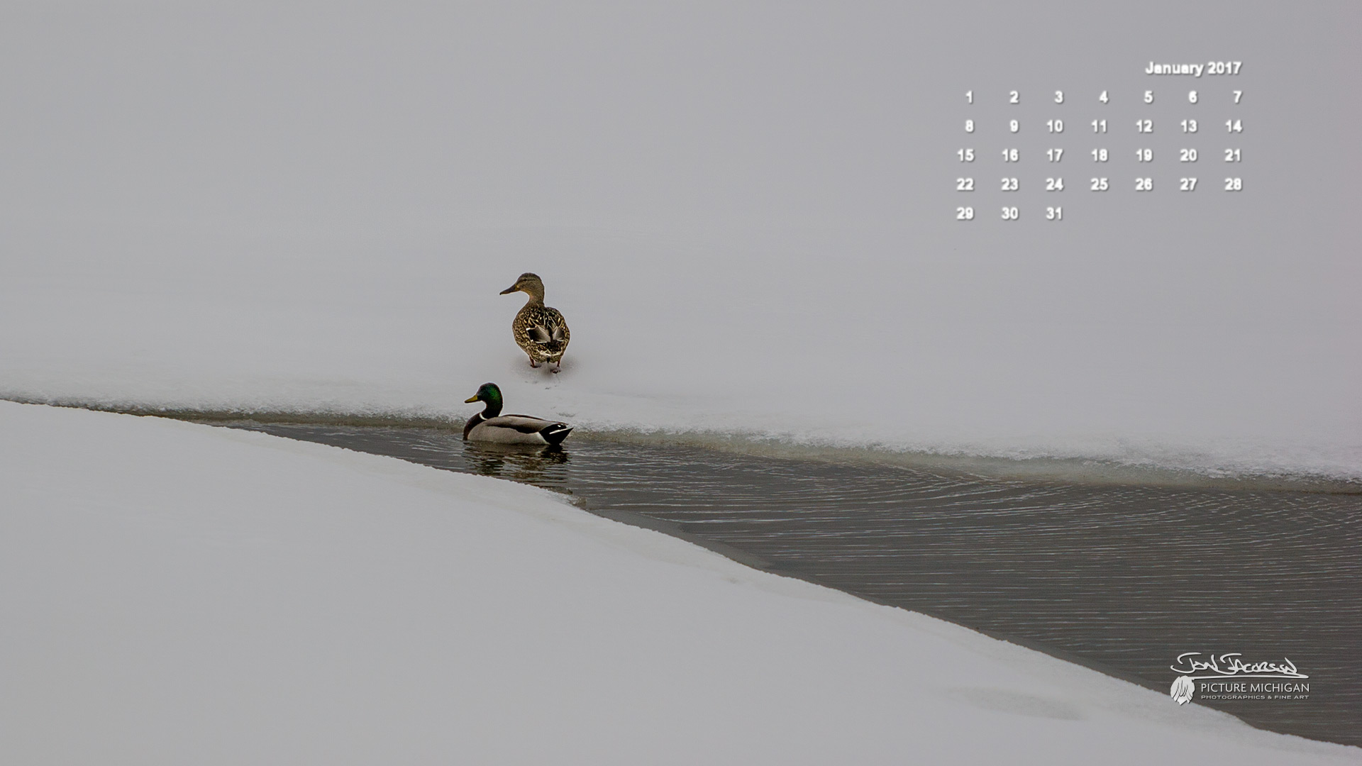January 2017 Calendar Desktop Wallpaper