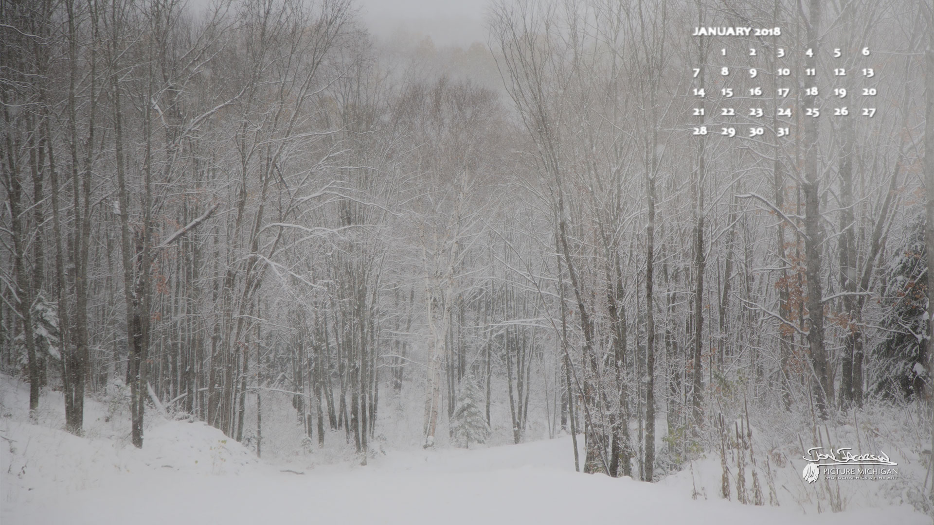 January 2018 Calendar Desktop Wallpaper