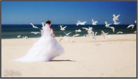 Muskegon Beach Wedding Photography